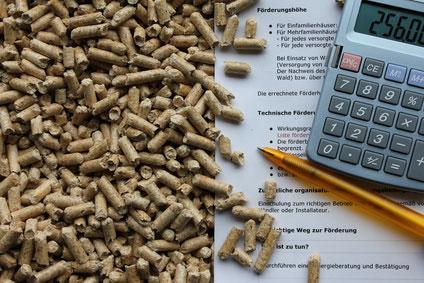 Förderung von Biomasseheizung